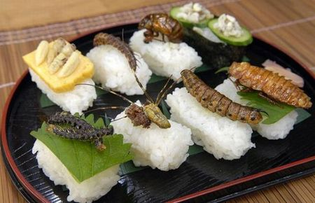 Insect_sushi_15